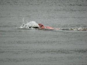 2 zwem